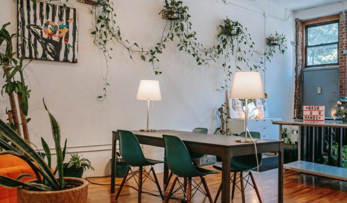 Moderne spisestue med planter på væggene
